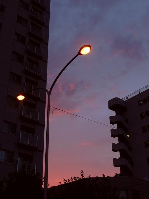 20100830.jpg