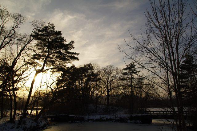 2010年12月21日大沼1.jpg