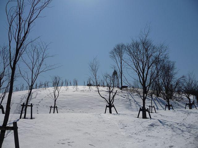 20110405-11.jpg