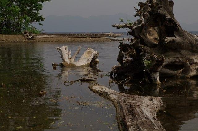 20110622支笏湖5.jpg