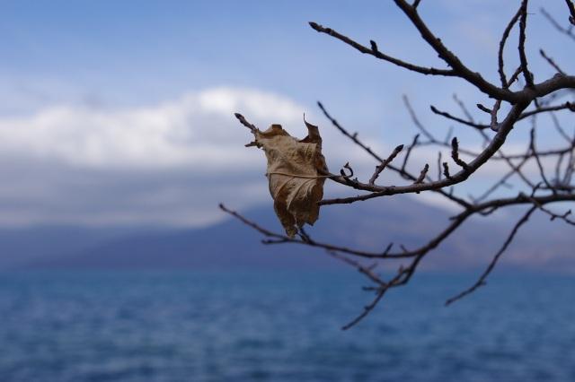 2011年10月21日9支笏湖8.jpg