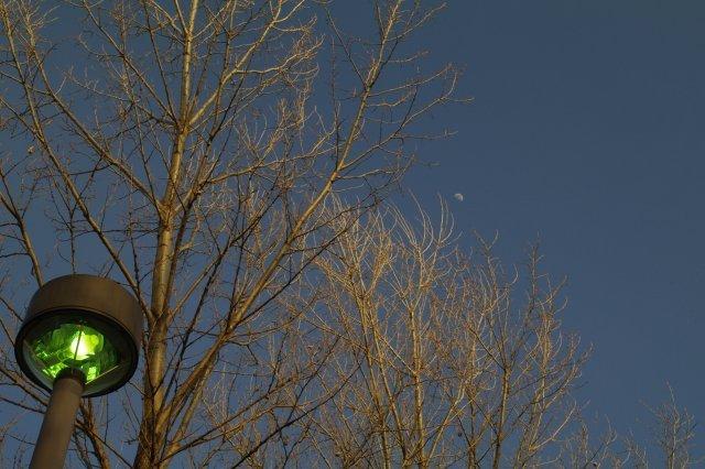 2011年4月12日モエレ沼公園の夕景1.jpg