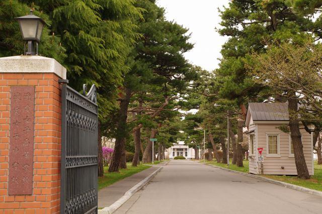 2011年5月5日函館1.jpg