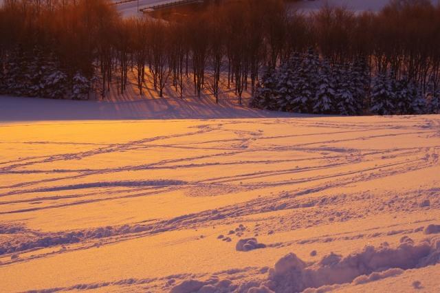 2012年1月20日モエレ沼公園9.jpg