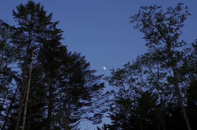 2012年5月31日-支笏湖10.jpg