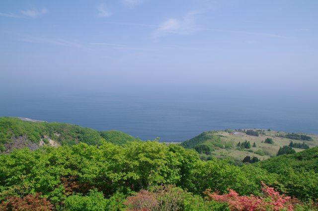 恵山-つつじ2011年6月7日-7.jpg