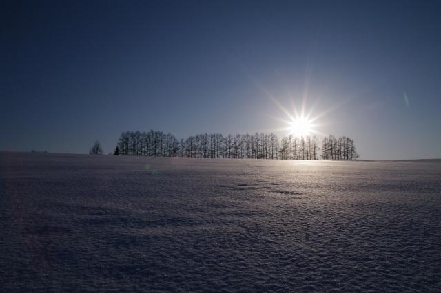 美瑛2011年2月22日‐10.jpg