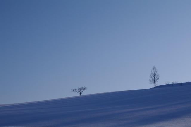 美瑛2011年2月22日‐5.jpg