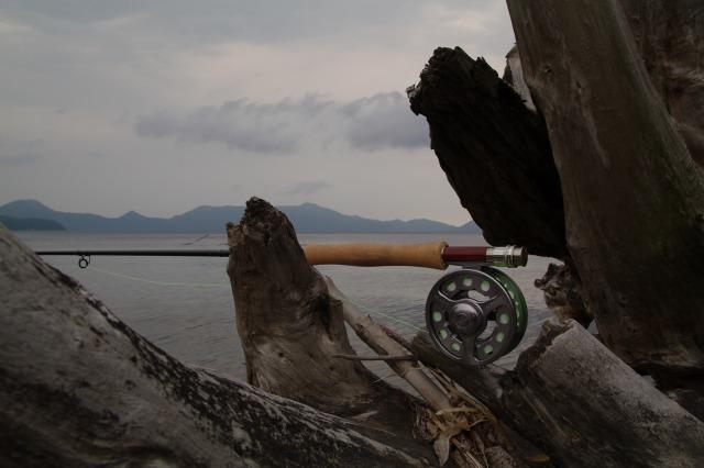 20110622支笏湖2.jpg