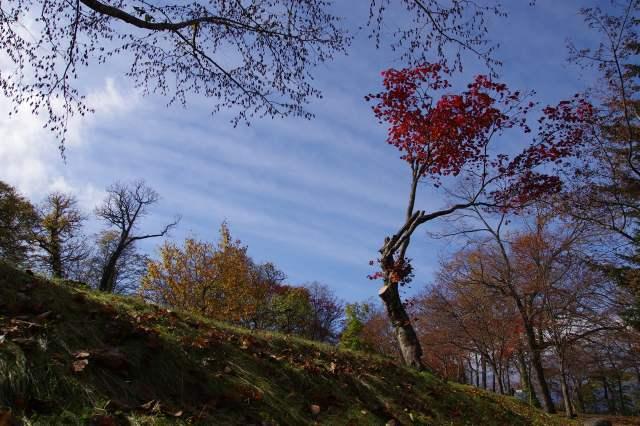2011年10月21日8支笏湖7.jpg