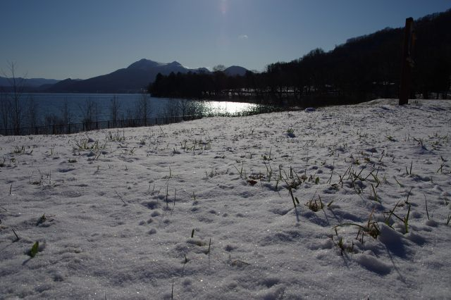 2011年12月2日洞爺湖9.jpg