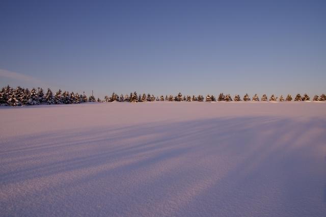 2012年1月20日モエレ沼公園15.jpg