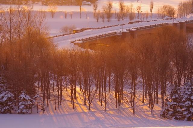 2012年1月20日モエレ沼公園8.jpg