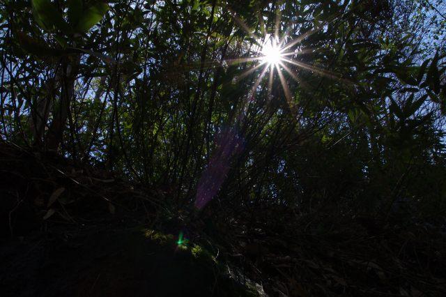 支笏湖2011年5月18日-5.jpg